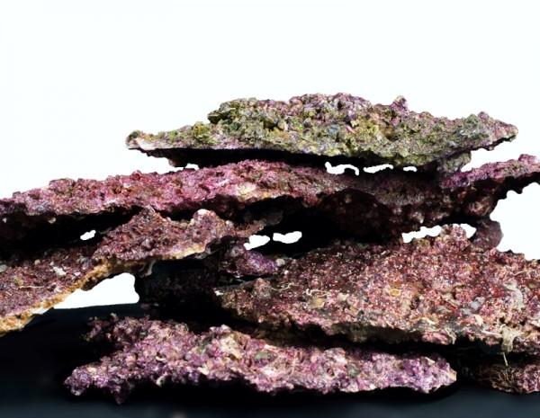 Real Reef Shelf Rock